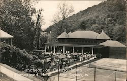 Luncheon on Casino Lawn, Homestead Hotel