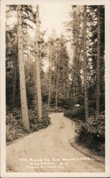The Road to Big Woods Lodge Postcard