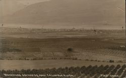 Wenatchee Orchards and Columbia River Postcard