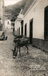 Burro Parking at Hotel de Los Arcos Postcard