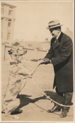 Man Greeting Dog