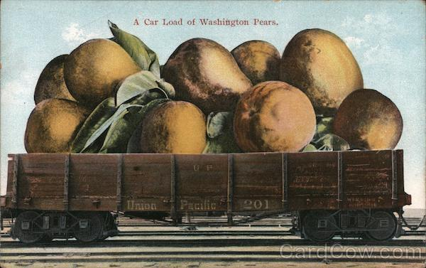 A Car Load of Washington Pears