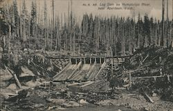 Log Dam on Humptulips River