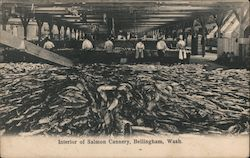 Interior of Salmon Cannery