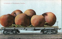 A Carload of Washington Peaches