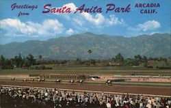 Greetings from Santa Anita Park Postcard
