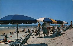 Umbrellas line the Riviera of the South Postcard