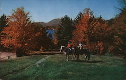 The Scenic Grandeur of Bridal Trails Around Lake Placid