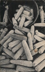 Field Corn, Hook's 1890 Drug Store