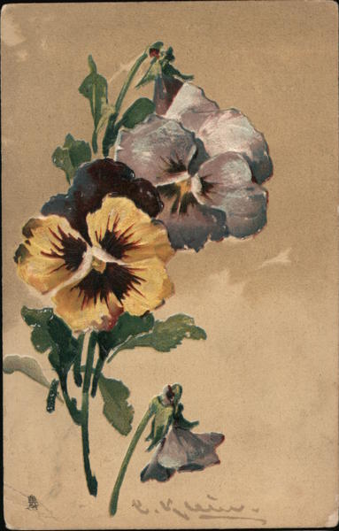 A Group of Yellow and Blue Flowers C. Klein