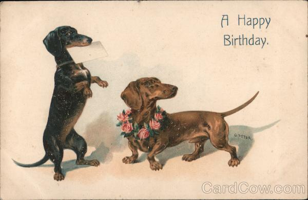 A Happy Birthday Dachshunds