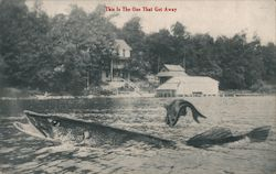 This is the One That Got Away - A Large Fish in a Lake Postcard