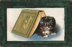 Little Dog Hiding under a Book