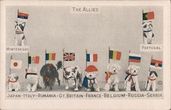 The Allies - Dogs Representing Different Countries