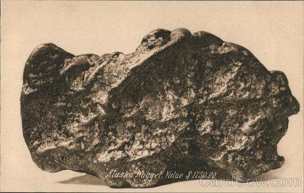 Alaska Nugget, Value $1750.00 Geology, Rocks & Minerals