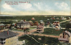 Bird's Eye Viewlooking North Postcard