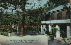 Swizzle Inn, Over 100 Years Old Postcard