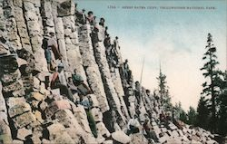 Sheep Eater Cliff, Yellowstone National Park Postcard