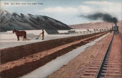 Salt Beds, Great Salt Lake Postcard