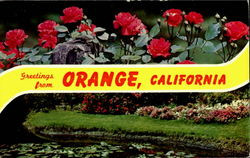 Greetings From Orange