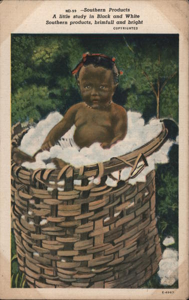 Black Baby in a Basket of Cotton Black Americana