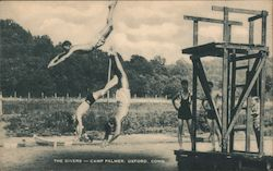 The Diver-Camp Palmer Postcard