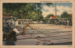 Shuffleboard, A Popular Sport in Florida Postcard