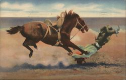 Spills and Thrills with a Bucking Bronco Postcard