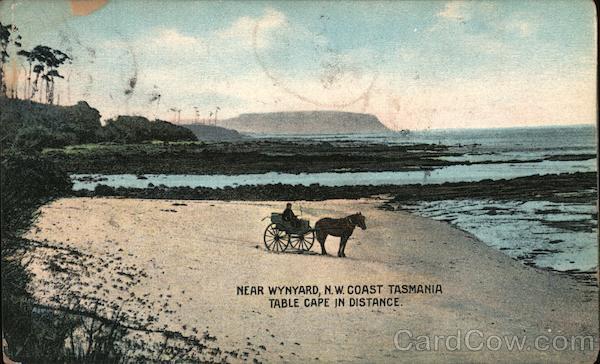 Near Wynyard, N.W.Coast Tasmania, Table Cape in distance Australia