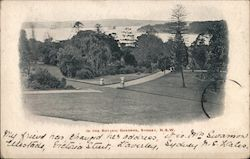 In the Botanic Gardens, N.S.W. Postcard