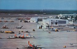The Flight Line at the Air Proving Ground Center Postcard