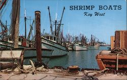Shrimp Boats in the Harbour Postcard