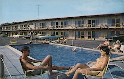 The Moors Motel Postcard