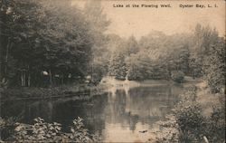Lake at the Flowing Well