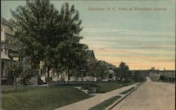 View of Elizabeth Avenue Postcard