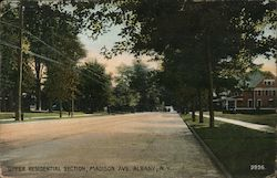 Upper Residential Section, Madison Ave. Albany, N.Y.