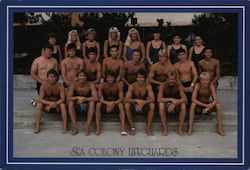 Sea Colony Lifeguards