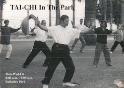 Tai Chi in the Park, Palisaides Park
