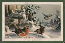 Birds Eating Birdseed in the Snow, A Merry Christmas Postcard