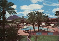 Safari Hotel Postcard