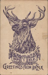 Greetings from an Elk - drawing of elk, banner with B.P.O.E.