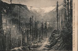 On the Great Northern R.R. near Scenic, showing 3 tracks, Washington Mountains, trees, trails