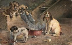 Dogs gathered around bowl of steaming water