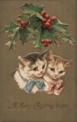 Two Cats Under The Mistletoe