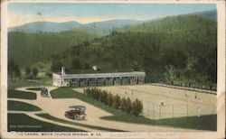 Casino and Grounds Postcard