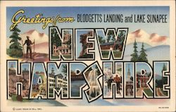 Greetings from Blodgetts Landing and Lake Sunapee Postcard