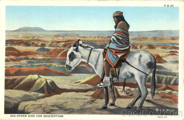 Native American Indian on Horse Native Americana