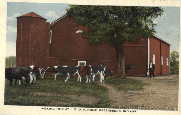 Milking Time At I.O.O.F. Home Greensburg Indiana