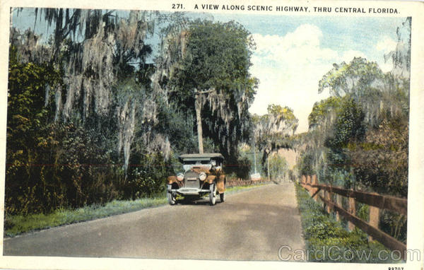 A View Along Scenic Highway, Thru Central Florida