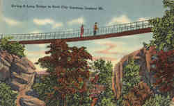 Swing-A-Long Bridge in Rock City Gardens, Lookout Mountain